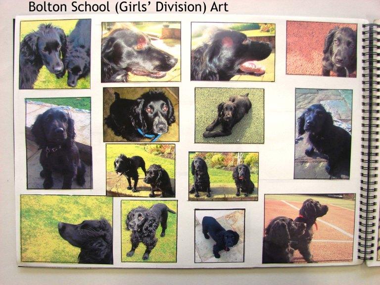 Bolton School (Girls' Division) Art Khamilla m